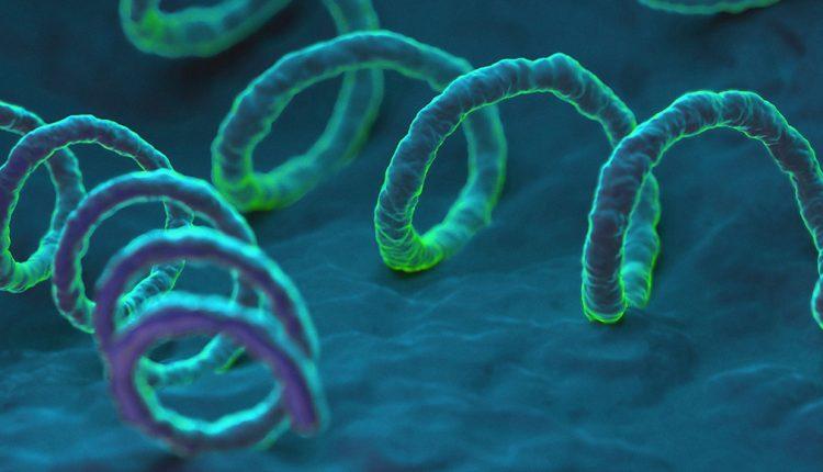 VDRL နဲ့ TPHA ကာလသားရောဂါစစ်ဆေးခြင်း